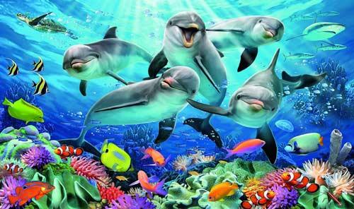 puzzle bambini delfini